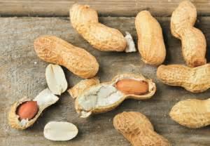 alimentos bajos en grasas alimentos bajos en grasas y ricos en proteinas solo