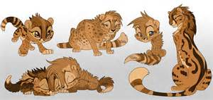 cheetah template baby cheetah template related keywords suggestions