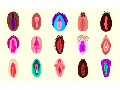 different sizes and shapes of viginal and hymen with pictures vagina emojis marie claire