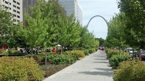 City Garden by Part Of The City Garden In St Louis Picture Of City