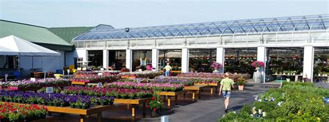 Greenhouse Garden Center by Garden Centers Commercial Greenhouse Structures