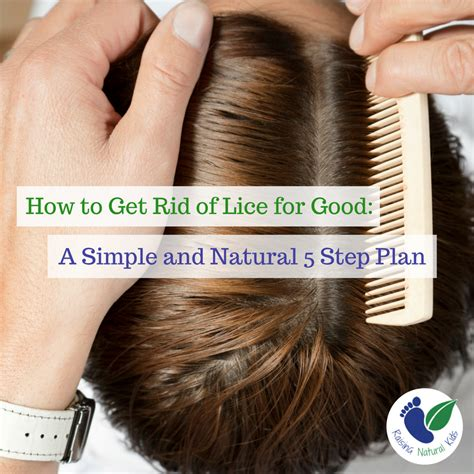 a 5 step plan for lice treatment that will kill