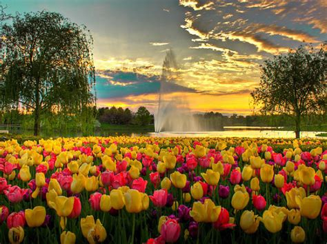chicago botanic garden glencoe il things to do in