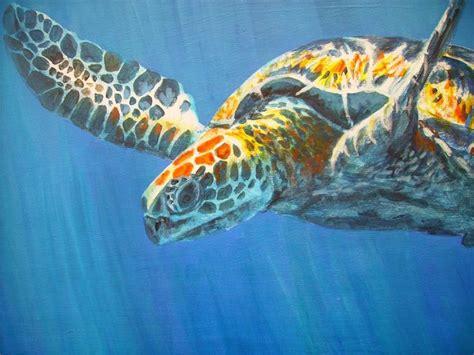 colorful turtle wallpaper colorful sea underwater wallpaper beautiful ocean