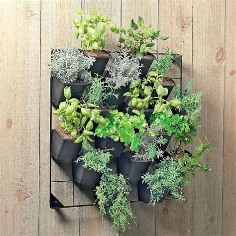herb wall 20 beautiful diy vertical herb garden ideas 2015