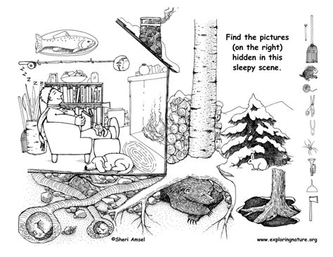 Hibernation Coloring Pages For Preschoolers Coloring Pages Hibernating Coloring Page