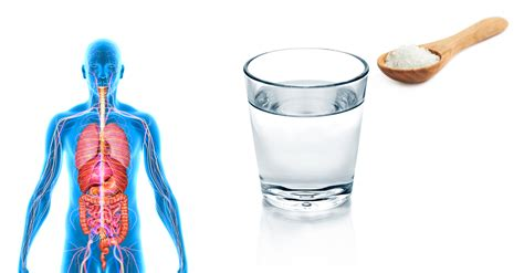 what is a cup you should drink a cup of warm salt water 1x a day for a