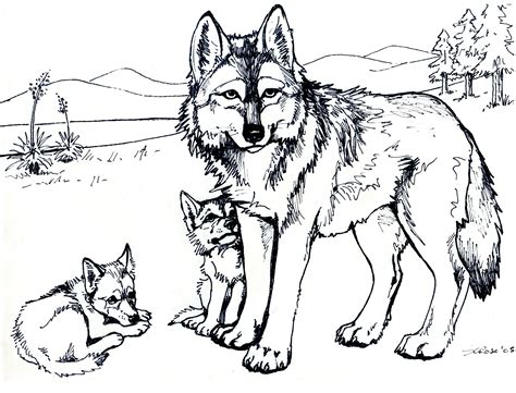free printable for adults printable free wolf coloring pages for adults desenhos