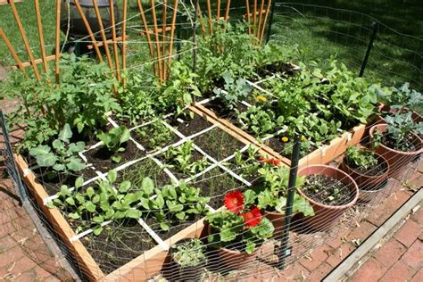 24 Awesome Ideas For Backyard Vegetable Gardens Page 5 Of 5 Awesome Vegetable Gardens