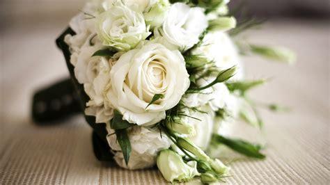 blumenstrauss aus weissen rosen hintergrundbilder
