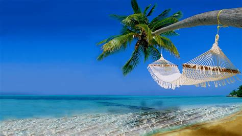 wallpaper tropical beach ocean hawaii coast 4k nature