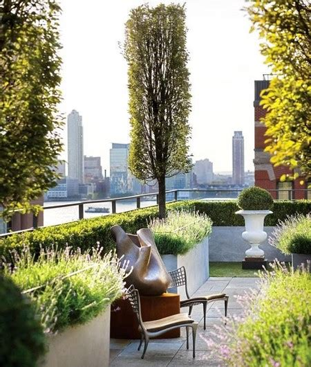 roof garden with potted trees www coolgarden me