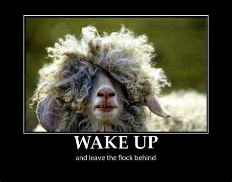 wake up everybody no more sleeping in bed 16 best images about earth to sheeple come in