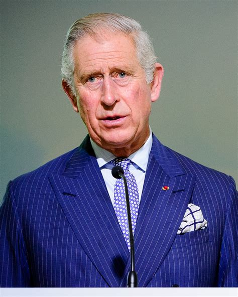 prince charles charles prince of wales wikiwand