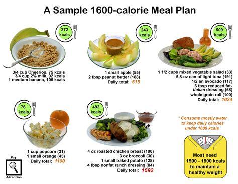 contoh makanan tinggi protein sepcont
