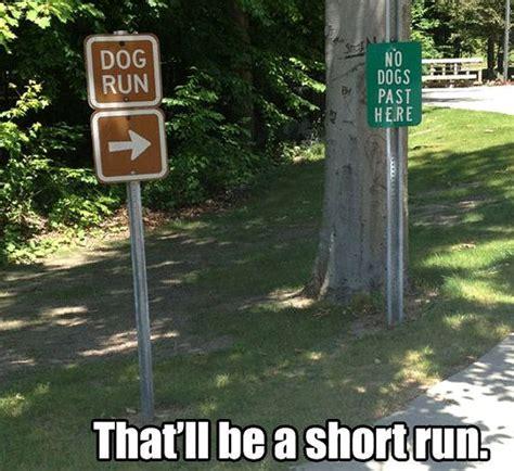 Clean Humor Memes - run forest run funny pinterest