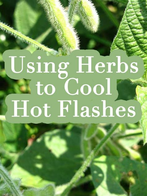 menopause mood swings natural remedies using herbs to cool hot flashes and other symptoms during