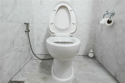Bidet Hygienedusche by Alternativen Zu Toilettenpapier Utopia De