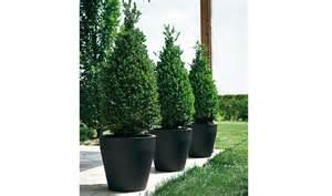pot niscal pour interieur ou exterieur pot pour arbuste pot pour plantes