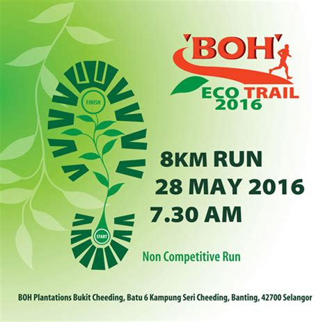 Teh Eco larian boh eco trail 2016 boh plantations bukit cheeding