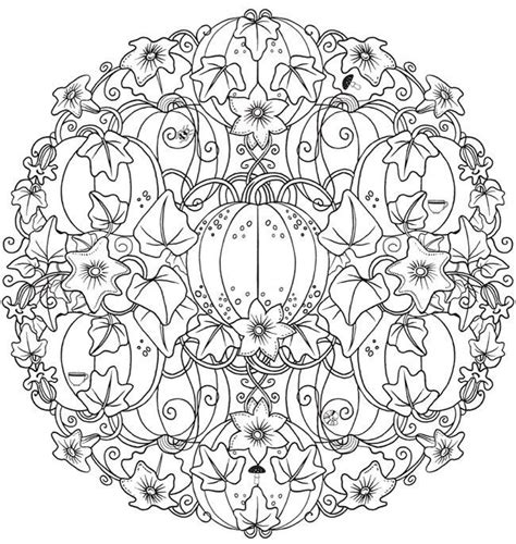 detailed pumpkin coloring page 76 best halloween images on pinterest witches coloring