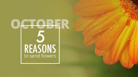 Reasons To Send Flowers by 5 Reasons To Send Flowers October 16