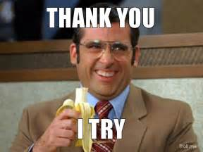 No You Are Meme - 1000 images about memes on pinterest thanks meme