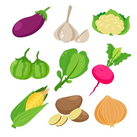 vegetables vector colored vegetables collection vector free