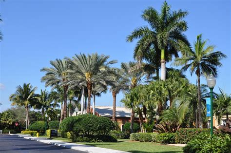 Fellowship Palm Gardens by Fellowship Church Gentile Glas Holloway O Mahoney