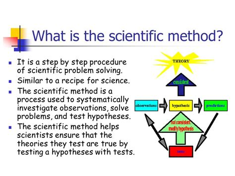 the seven what are the steps of scientific method wiring