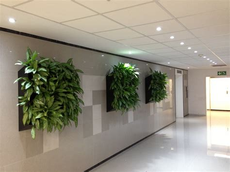 Office Planter by Office Plant Busines Images