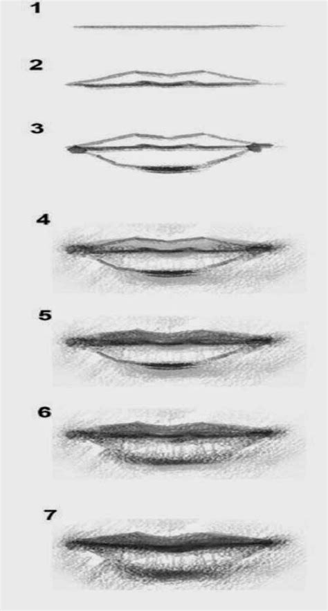 how to draw mouths drawing step by step www pixshark images