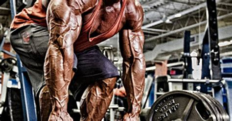 the back is a little too much volume but i like the long gvt too much volume only trunk legs and triceps