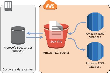 importing and exporting sql server databases amazon