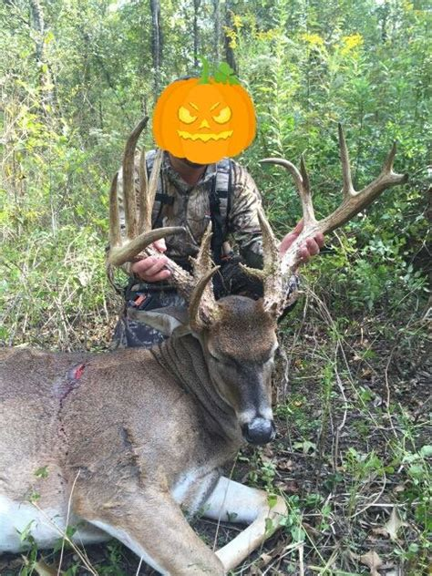 Records In Louisiana Potential Record Book Louisiana Buck Has Been Confiscated Pics