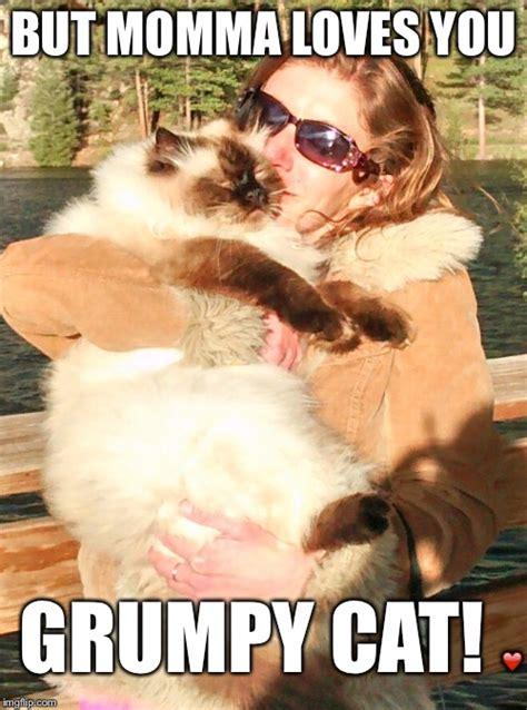 Grumpy Cat Meme Love - momma loves grumpy imgflip