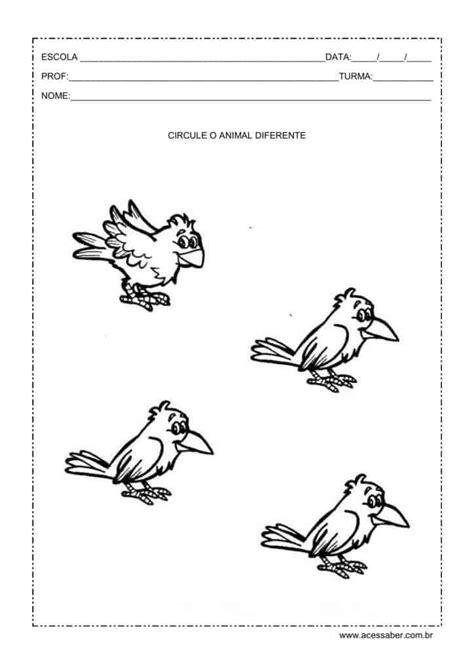 Atividades sobre os animais