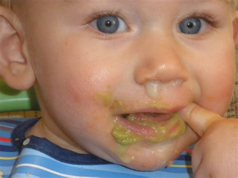 color of boogers pictures of boogers www imgkid the image kid has it