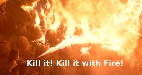 Kill It With Fire Meme - image 14367 kill it with fire know your meme
