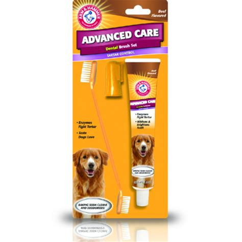 puppy toothpaste arm hammer toothpaste toothbrush set from 163 9 89 waitrose pet