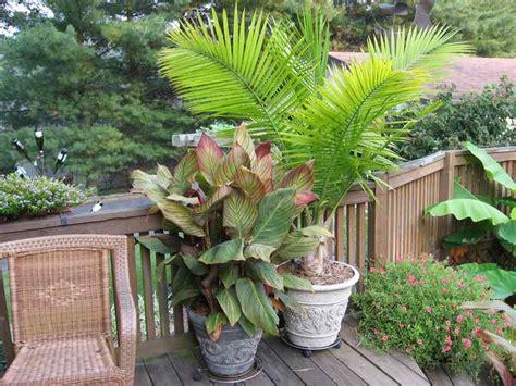 ky dan s patio pots