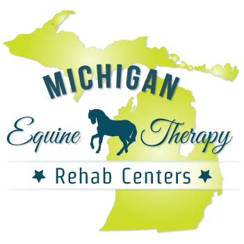 Detox Centers In Michigan by Michigan Equine Therapy Rehab Centers