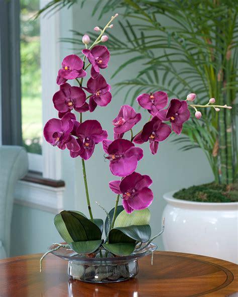 phalaenopsis silk orchid arrangement at silkflowers com