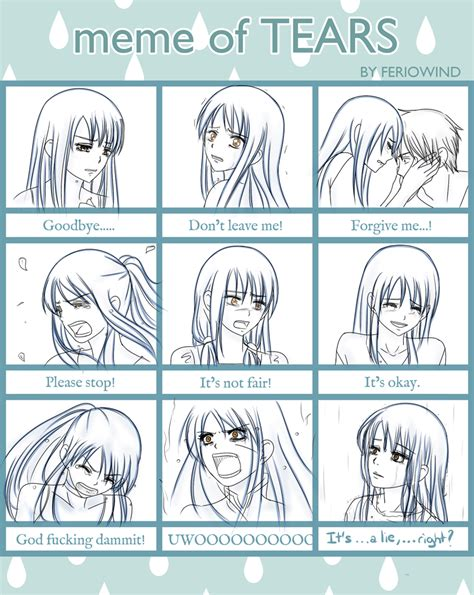 Tears Meme - tears meme by lislyn on deviantart