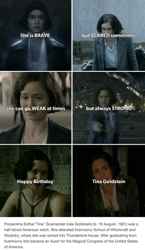 tina goldstein house best 25 harry potter insults ideas only on pinterest
