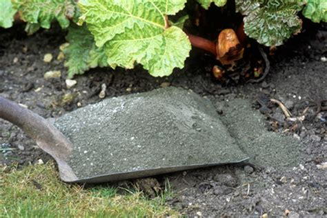 Fireplace Ashes In Compost by Using Wood Ash In Your Vegetable Garden Gravelmaster
