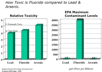 Fluoride Detox Side Effects by Detox 101 Introduction And 101 1 Fluoride The Official