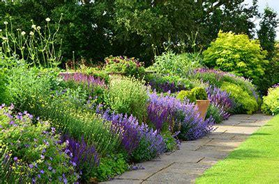 Garden Ideas town place garden short border
