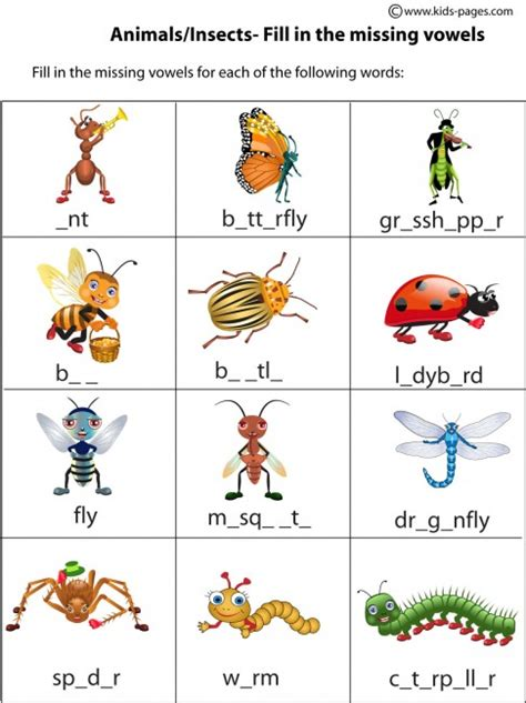 kids bug and insects worksheets insects worksheet