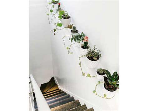 Exceptionnel Idee Deco Montee Escalier #1: aligner-des-plantes-pour-colorer-la-cage-descalier-blanc.jpg